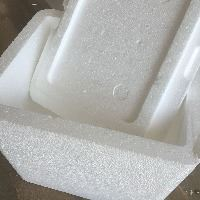 Disposable polystyrene cooler